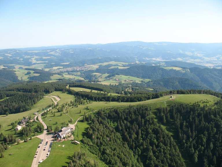 Auf dem Single Trail durch den Bienwalder Bärlauchwald - Start in Kandel,