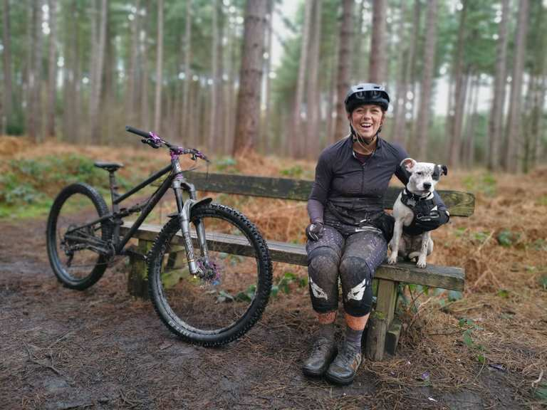 Sherwood Pines MTB trails   mountain bike ride   Komoot