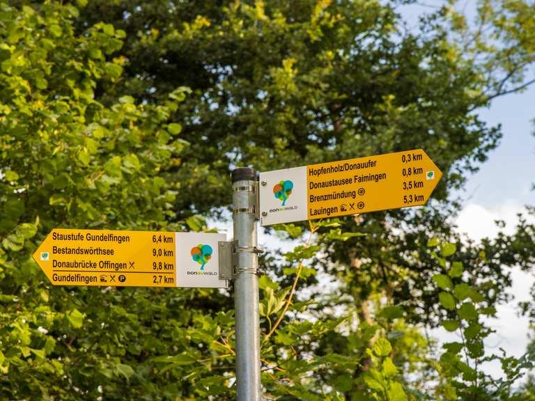Singletrail günzburg