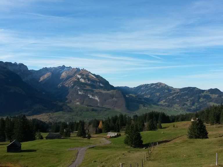 Singletrails bregenzerwald Mountainbiketouren - Hotel Bären Mellau